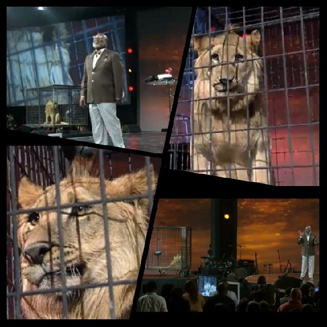 Bishop T D  Jakes Uses Live Lion On Stage   MyPraise 102 5