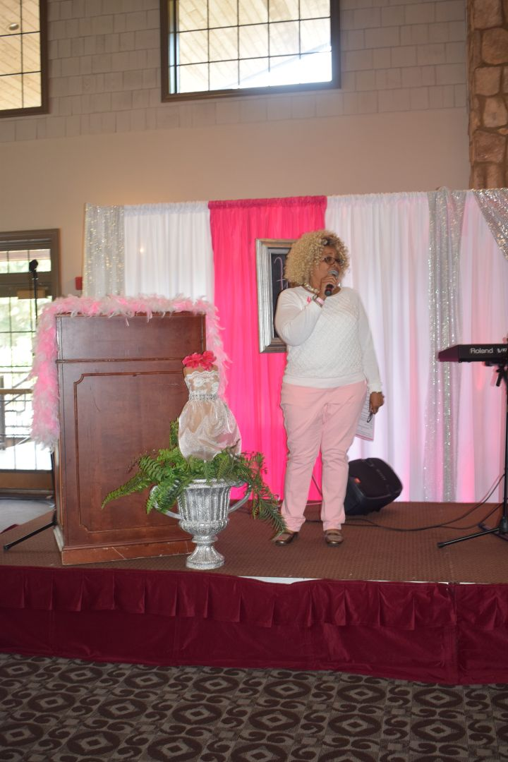 Pretty In Pink Luncheon 44