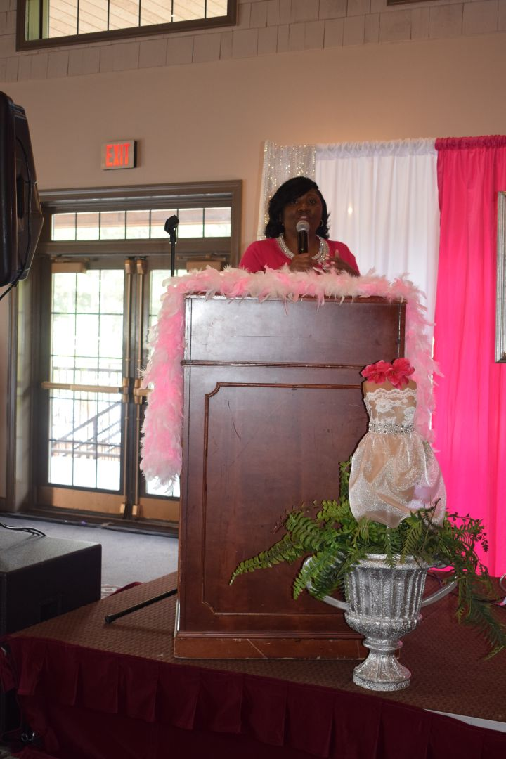 Pretty In Pink Luncheon 41