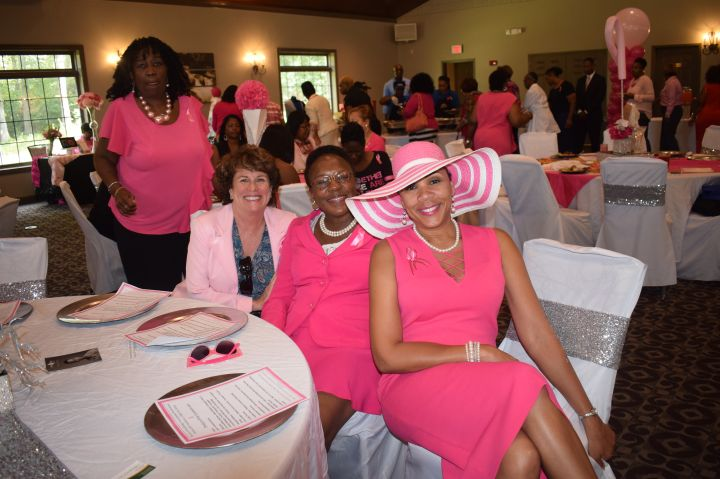 Pretty In Pink Luncheon 36