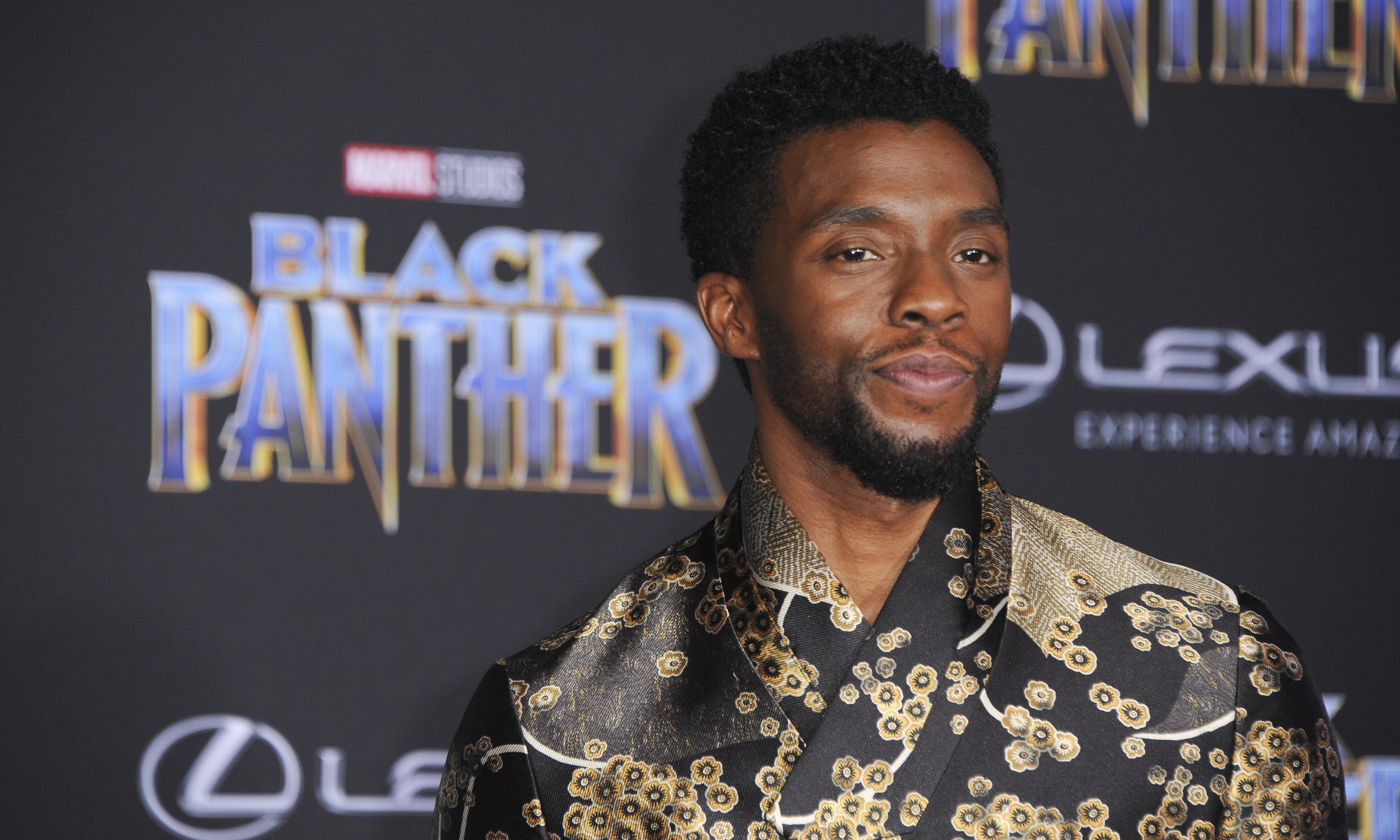 Film Premiere of Black Panther